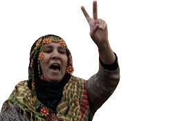 Sadece Kürtler'e değil hepimize özgürlük