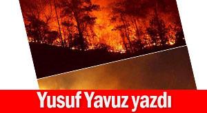 Sürmene yangını ağaçlara zarar vermemiş!