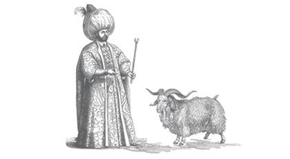 Siz Diriliş'e bakarken Süleyman Şah'ın keçileri böyle kaçırıldı