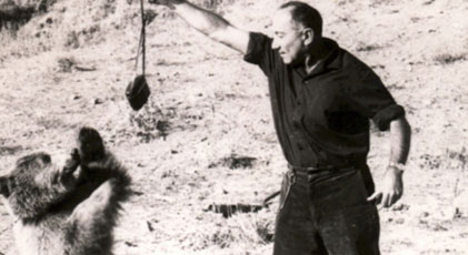 İsrail-Barzani İlişkileri