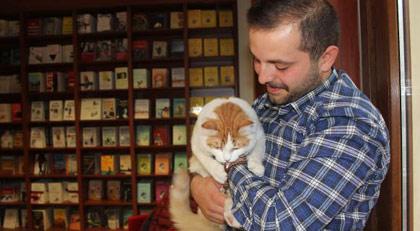 Kedi Barış'a eski dostundan ziyaret
