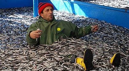 """""""Balık ne kadar bol"""" diyenler bu haberi okumasa da olur"""