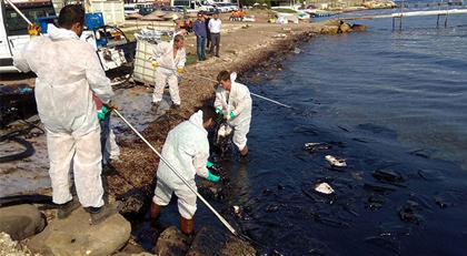 Foça'da denizi kirleten gemiyle ilgili yeni gelişme