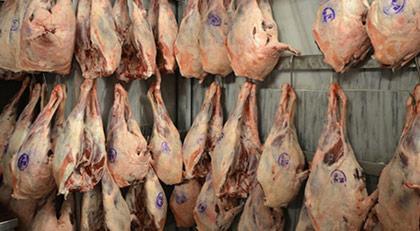 Bozuk etler nasıl imha ediliyor