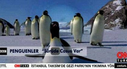 Gezi'de penguen yayınlayan isim iddianamede nasıl geçiyor