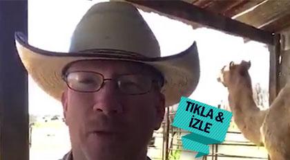 """Bu da Teksas'ın """"Hacı Ali""""si"""