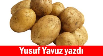 Patatesin altında ne gizliyorlar