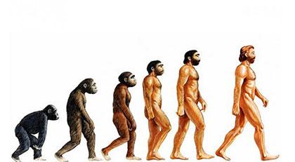 Bir Müslüman Evrim Teorisni destekleyebilir mi
