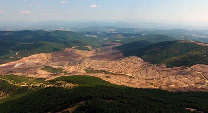 Kaz Dağları'na ne olduğunun yanıtı bu haberde