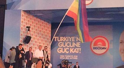 Eşcinseller AKP'nin vitrinine nasıl konmuştu