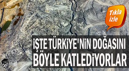 İşte Türkiye'nin doğasını böyle katlediyorlar