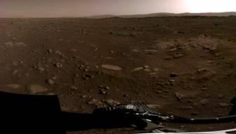 Mars'tan dünyaya getirdiler burada kaybettiler