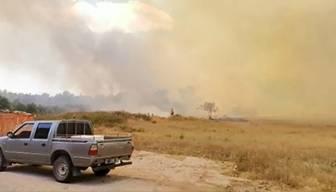 Manavgat'ta orman yangını başladı