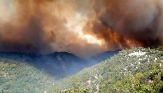 Manavgat'taki yangında ölü sayısı 8'e yükseldi