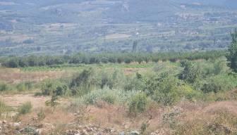 Sakarya'da eğitim uçağı düştü iddiası