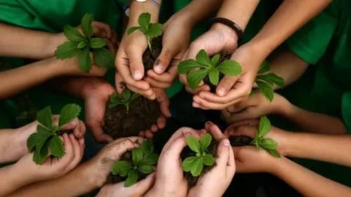 Çevreci çocukların dayanışma hikayesi