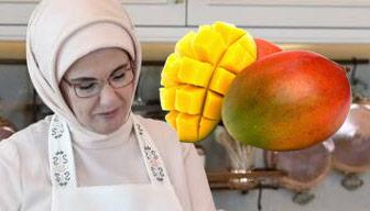 """Emine Erdoğan'ın """"mango"""" önerisi tartışma başlattı"""