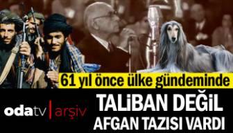 61 yıl önce ülke gündeminde Taliban değil Afgan tazısı vardı
