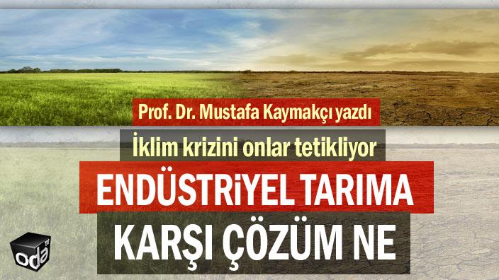 Endüstriyel tarıma karşı çözüm ne