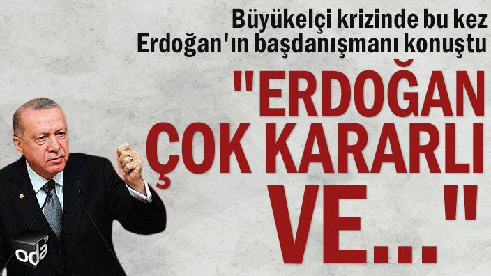 """Büyükelçi krizinde bu kez Erdoğan'ın başdanışmanı konuştu: """"Erdoğan çok kararlı ve..."""""""